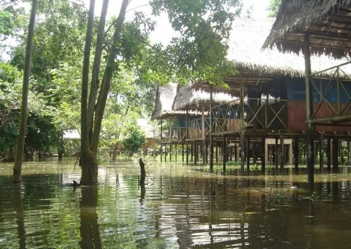 Amazon Muyuna Lodge